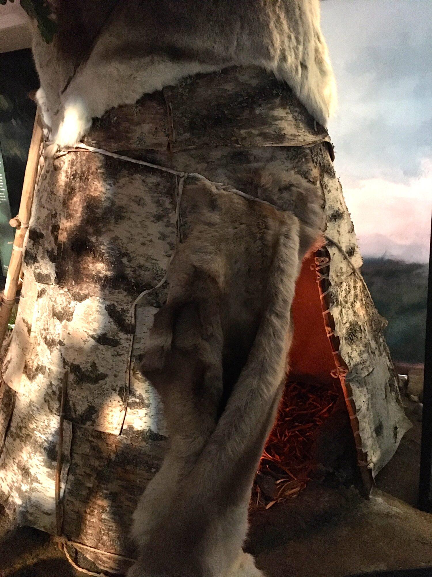 Telt af birkebark og skind - Skeletter og shamaner