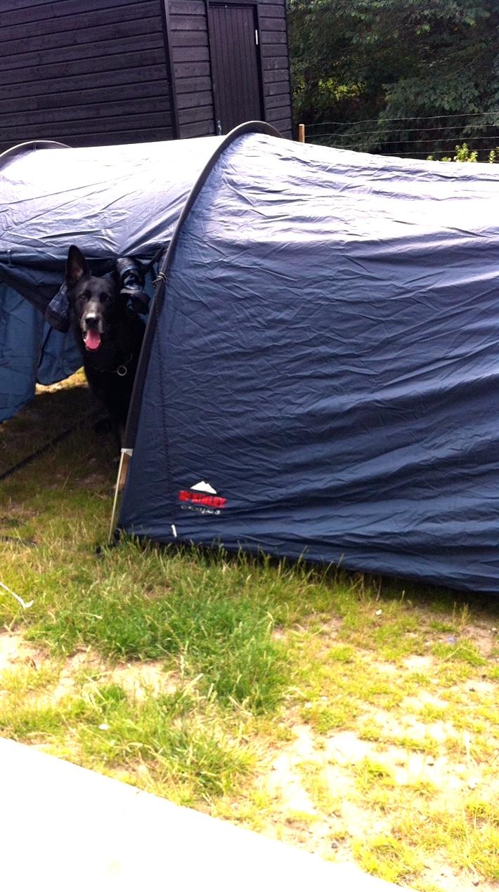 100 aktiviteter for børn og barnelige sjæle - på telt tur i haven