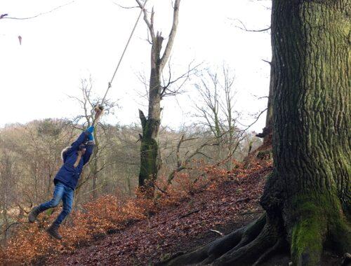 100 aktiviteter for børn og barnelige sjæle - en tur i skoven