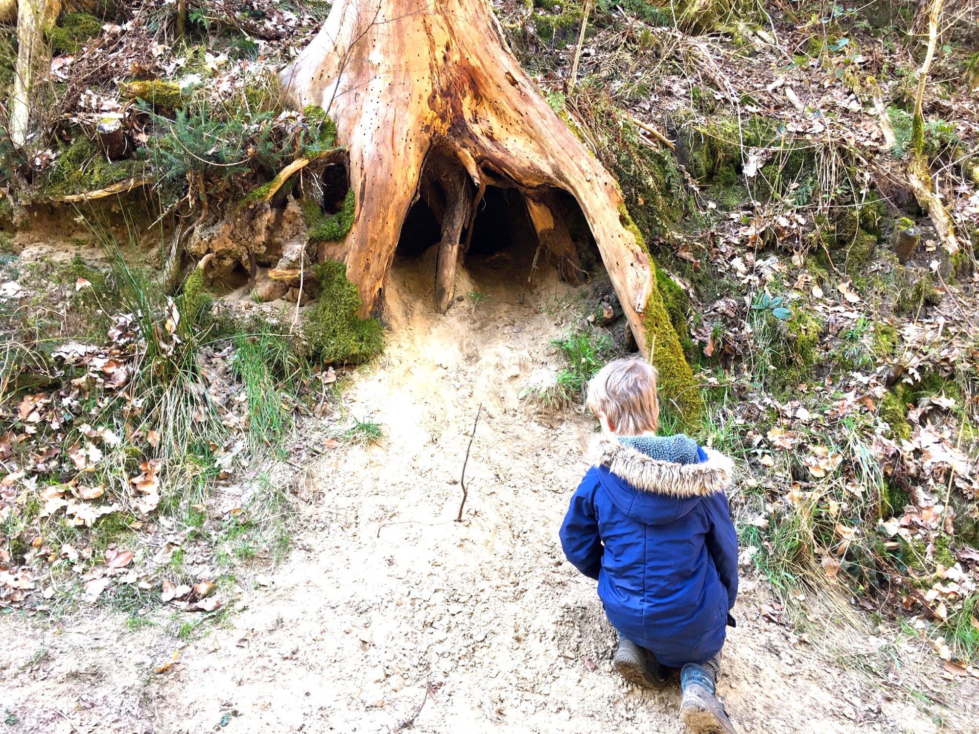 rævens hule