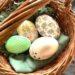 Guide til påskeharens påskejagt